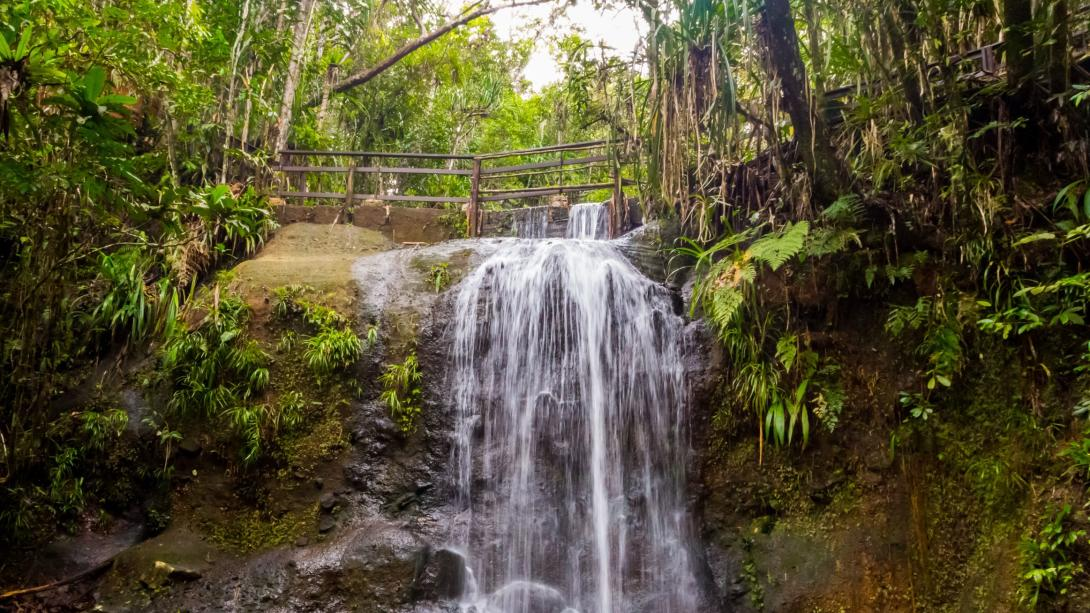 Durante su viaje alternativo en Fiyi, viajeros disfrutan una cascada.